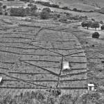Banyuls, France, 2013