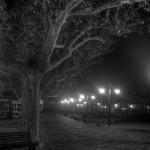 Collioure 2012 - 14
